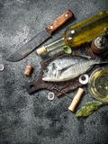 Fresh unprepared Dorado fish with white wine. On a rustic background Stock Image