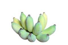 Fresh Unripe green Bananas isolated Royalty Free Stock Photo