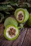 Fresh unripe green walnuts royalty free stock photo
