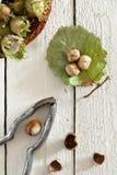 Fresh Unripe Hazelnuts Royalty Free Stock Photo