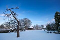 Fresh untouched snow in a beautiful garden