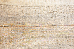 Fresh untreated wooden plank texture Stock Image
