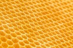 Fresh unused drawn honeycomb. Royalty Free Stock Photos