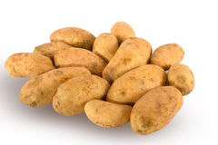 Fresh unwashed potatoes Royalty Free Stock Images