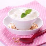 Fresh vanilla quark. Vanilla quark in bowl with mint Stock Image