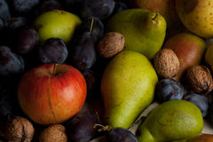 Fresh various fruits Royalty Free Stock Photography