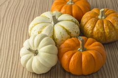 Pumkin stock photography