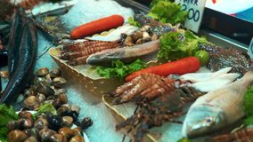 Fresh various seafood on crushed ice stock footage