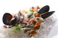 Fresh various seafood served on ice Royalty Free Stock Photos