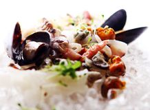 Fresh various seafood served on ice Stock Photography