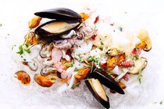 Fresh various seafood served on ice. In restaurant Stock Photo