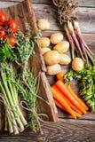 Fresh various vegetables on bark Royalty Free Stock Photo