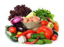 Fresh various vegetables Royalty Free Stock Photo