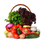 Fresh various vegetables Stock Photography