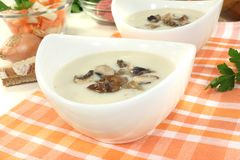 Fresh Veal cream soup Royalty Free Stock Image