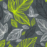 Fresh vector seamless floral  pattern with leaves Royalty Free Stock Photos