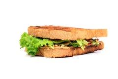 Fresh veg sandwich Royalty Free Stock Photo