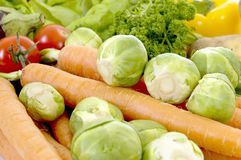 Fresh Vegetable. Fresh healthy colorful bio vegetables for daily vitamins Stock Image
