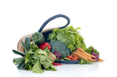 Fresh Vegetable. Fresh bio vegetables, white background, reflective surface Stock Photos