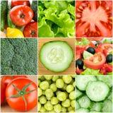 Fresh vegetable backgrounds Stock Image