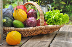 Fresh vegetable basket Stock Photos