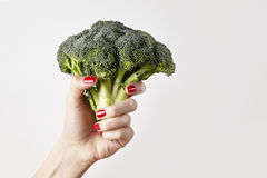 Fresh vegetable broccoli in woman hand, fingers with red nails manicure, isolated on white background, healthy lifestyle concept. Royalty Free Stock Images