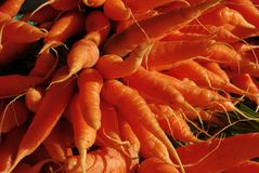 Fresh vegetable, carrot, in the market. Organic vegetable Royalty Free Stock Images