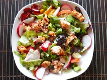 Fresh Vegetable Chicken salad . stock images