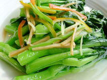 Fresh vegetable. Chinese cuisine, fresh vegetable   in the dish Stock Image