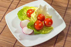Fresh vegetable dish Royalty Free Stock Photo