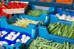 Fresh vegetable display Royalty Free Stock Image