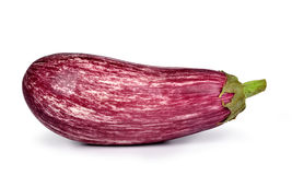 Fresh vegetable eggplant Stock Images