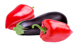 Fresh vegetable eggplants and pepper isolated on white. Background Stock Photos