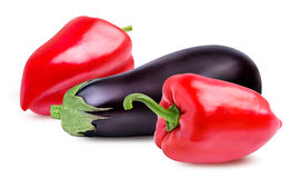 Fresh vegetable eggplants and pepper  on white. Background Stock Photos