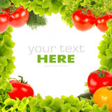 Fresh vegetable frame Royalty Free Stock Photography
