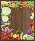 Fresh vegetable frame against wooden backdrop. Stock Images