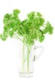 Fresh vegetable. Fresh vegetable green leaves in the glass Stock Photos