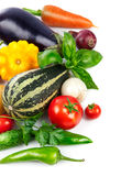 Fresh vegetable with green leaves and herbs Stock Image