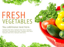 Fresh vegetable Stock Images