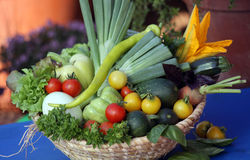 Fresh vegetable from home garden. Fresh and organic produced vegetable fruits from home garden Royalty Free Stock Image