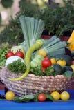 Fresh vegetable from home garden Stock Photos