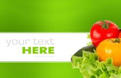 Fresh vegetable isolated on background Stock Images