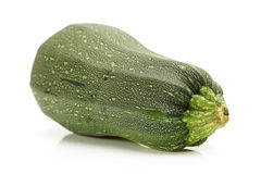 Fresh vegetable marrow. Royalty Free Stock Images