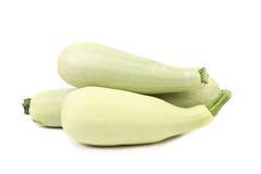 Fresh vegetable marrow. Stock Image