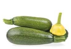 Fresh vegetable marrow Royalty Free Stock Images