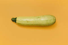 Fresh vegetable marrow Stock Photography