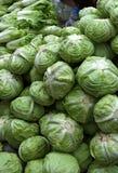 Fresh vegetable. The fresh vegetable in the morning market, MYANMAR stock images
