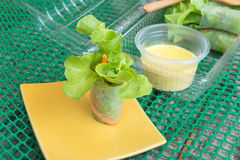 Fresh vegetable noodle spring roll, diet food, clean food Royalty Free Stock Images
