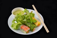 Fresh vegetable noodle spring roll with sauce on plate,. Salad roll, On a black background. Diet or cook concept royalty free stock photography