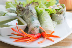 Fresh vegetable noodle spring roll with spicy sauce. Diet food Royalty Free Stock Image